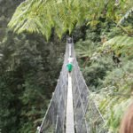 Children crossing suspension bridge in Australian rainforest