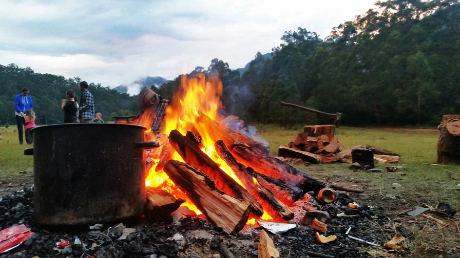 Family camping with fire and firewood logs in foreground